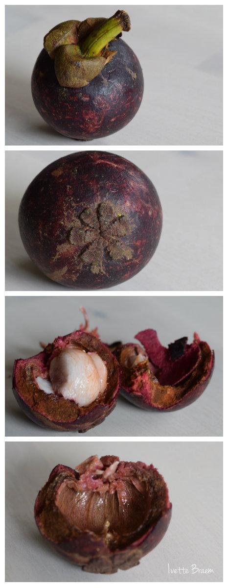 collage-nieuwe-vrucht