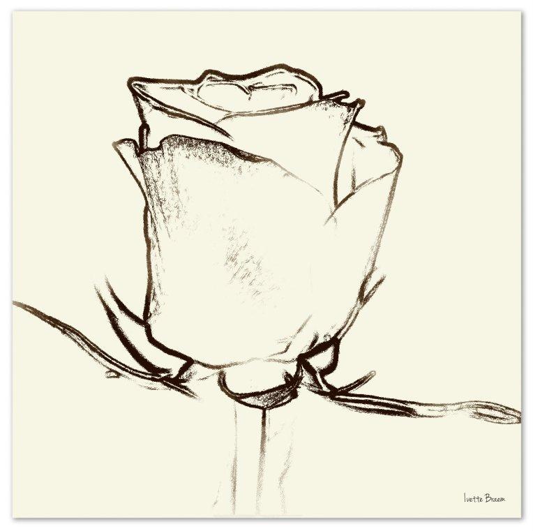 essentie roos
